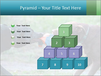 0000085758 PowerPoint Template - Slide 31