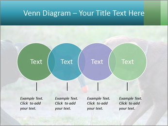 0000085758 PowerPoint Template - Slide 32