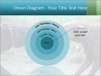 0000085758 PowerPoint Template - Slide 61
