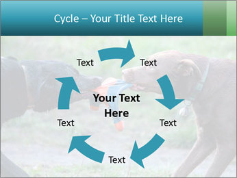 0000085758 PowerPoint Template - Slide 62