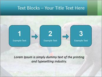 0000085758 PowerPoint Template - Slide 71