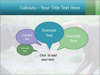 0000085758 PowerPoint Template - Slide 73