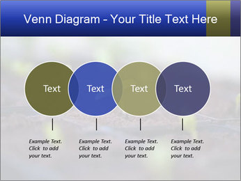 0000085776 PowerPoint Templates - Slide 32