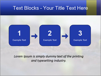 0000085776 PowerPoint Templates - Slide 71