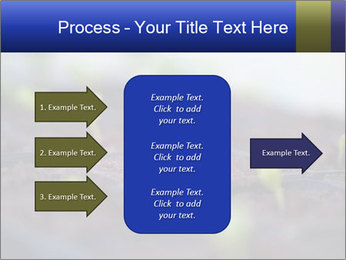 0000085776 PowerPoint Templates - Slide 85
