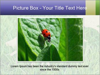 0000085782 PowerPoint Template - Slide 16