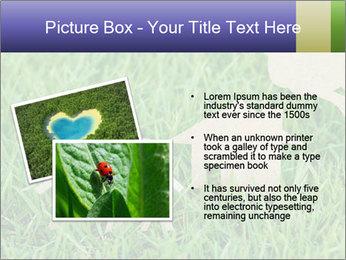 0000085782 PowerPoint Template - Slide 20