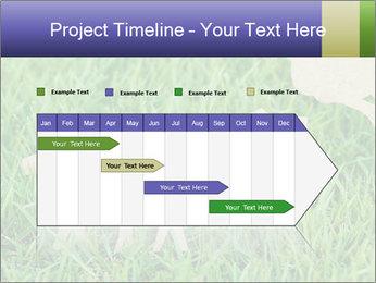 0000085782 PowerPoint Template - Slide 25