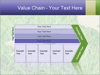 0000085782 PowerPoint Template - Slide 27