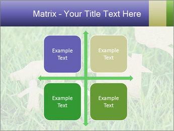0000085782 PowerPoint Template - Slide 37