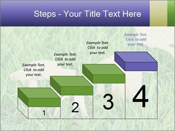 0000085782 PowerPoint Template - Slide 64