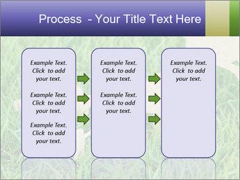 0000085782 PowerPoint Template - Slide 86