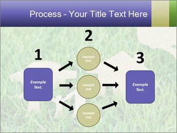 0000085782 PowerPoint Template - Slide 92