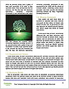 0000085782 Word Templates - Page 4