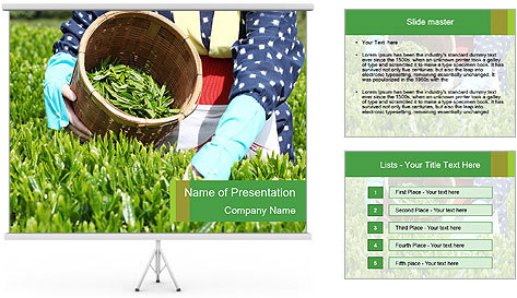 0000085784 PowerPoint Template