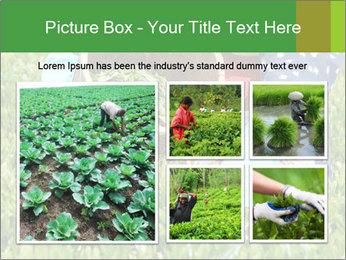 0000085784 PowerPoint Template - Slide 19