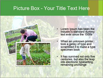0000085784 PowerPoint Template - Slide 20