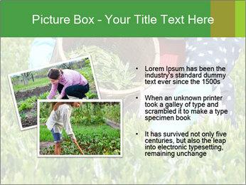 0000085784 PowerPoint Template - Slide 20