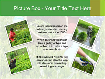 0000085784 PowerPoint Template - Slide 24