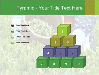 0000085784 PowerPoint Template - Slide 31