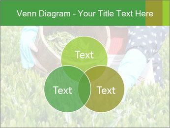 0000085784 PowerPoint Template - Slide 33