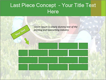 0000085784 PowerPoint Template - Slide 46
