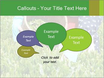 0000085784 PowerPoint Template - Slide 73