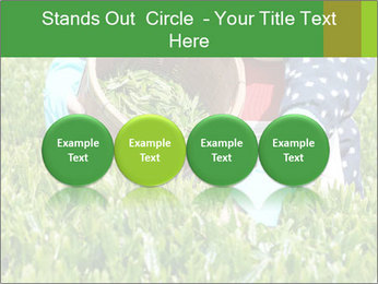 0000085784 PowerPoint Template - Slide 76