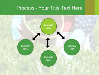 0000085784 PowerPoint Template - Slide 91