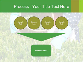 0000085784 PowerPoint Template - Slide 93