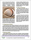 0000085791 Word Templates - Page 4