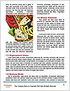 0000085804 Word Templates - Page 4