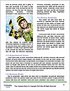 0000085807 Word Template - Page 4