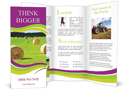 0000085809 Brochure Template