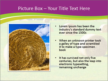0000085809 PowerPoint Template - Slide 13