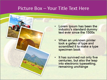 0000085809 PowerPoint Template - Slide 17