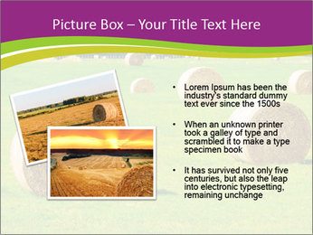 0000085809 PowerPoint Template - Slide 20
