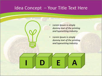 0000085809 PowerPoint Template - Slide 80
