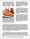 0000085810 Word Template - Page 4