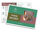 0000085813 Postcard Templates