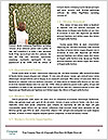 0000085817 Word Templates - Page 4