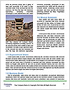 0000085841 Word Template - Page 4