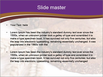 0000085844 PowerPoint Template - Slide 2