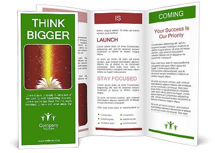 0000085848 Brochure Template
