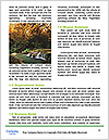 0000085854 Word Template - Page 4