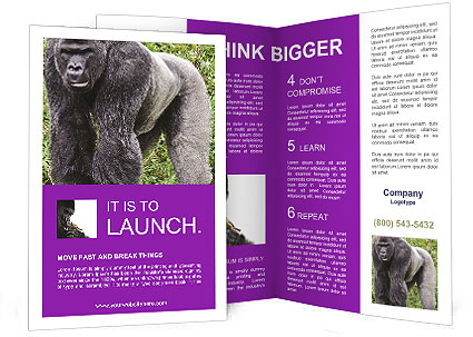 0000085860 Brochure Template