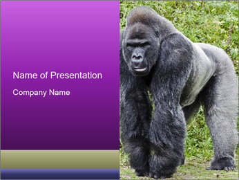 0000085860 PowerPoint Template - Slide 1