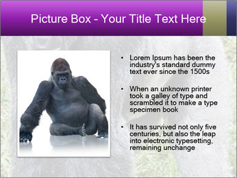 0000085860 PowerPoint Template - Slide 13