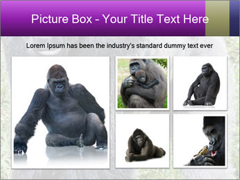 0000085860 PowerPoint Template - Slide 19
