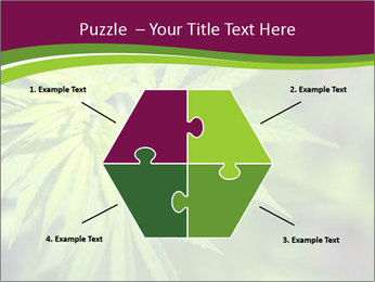 0000085868 PowerPoint Templates - Slide 40